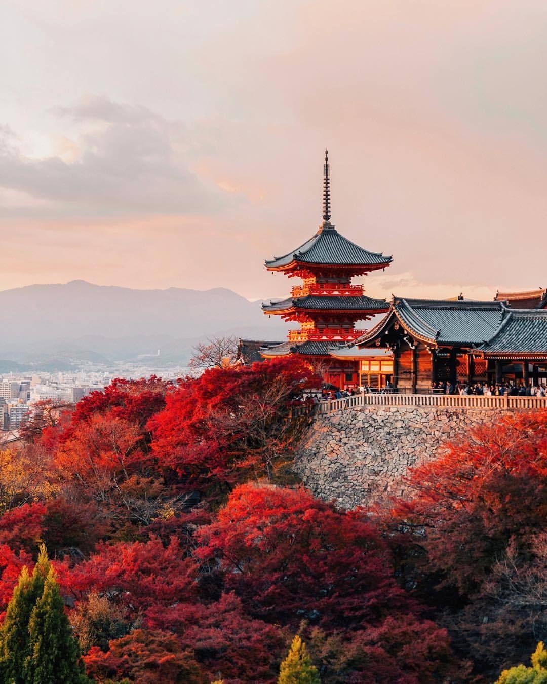Покажи мне картинки японии